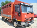 Eurocargo  Iveco 65e14