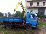Camion Fiat 100f13