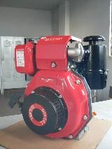 Motore diesel  Cinese ramnay hp8