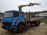 Camion  Iveco 165/24