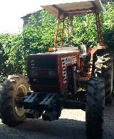 Trattore Fiat  45 66 dt 12