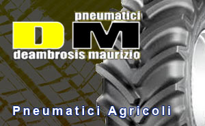 DM Pneumatici