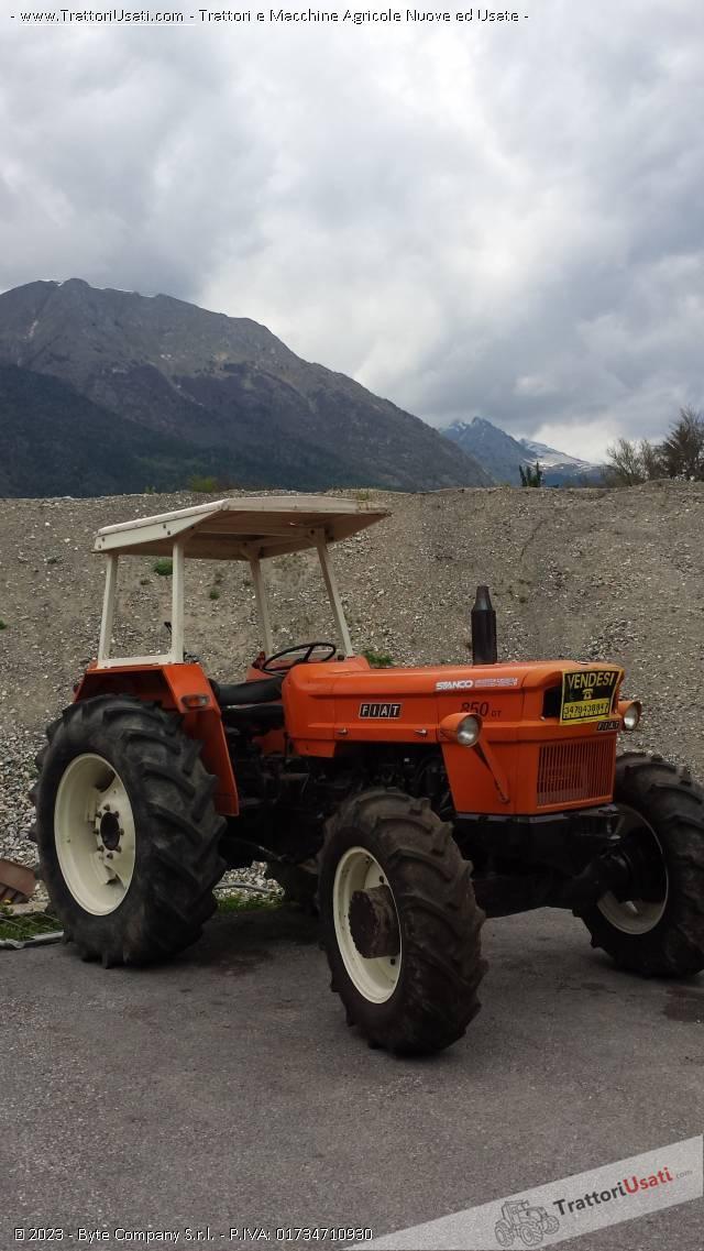 Trattore fiat 850 dt for Cavalli in vendita in trentino