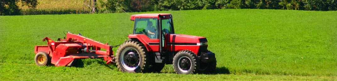 Trattori usati annunci macchine e trattori agricoli pagina for Forum trattori carraro