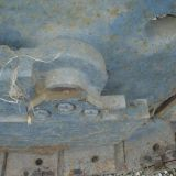 Foto 6 Trattore cingolato lamborghini - c 503