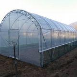 Serre usati cerco vendo compro for Serre agricole usate in vendita