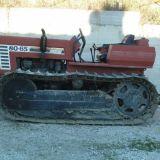 Trattore cingolato Fiat 80-65