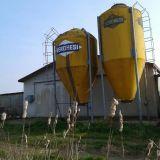 Coppia silos  90 qli veronesi
