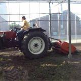 Trattore frutteto Fiat 45 66 dt