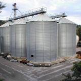 6 silos cereali  270 ton a fondo piano