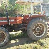 Trattore Fiat  566 dt
