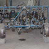 Vangatrice  bufalo falc