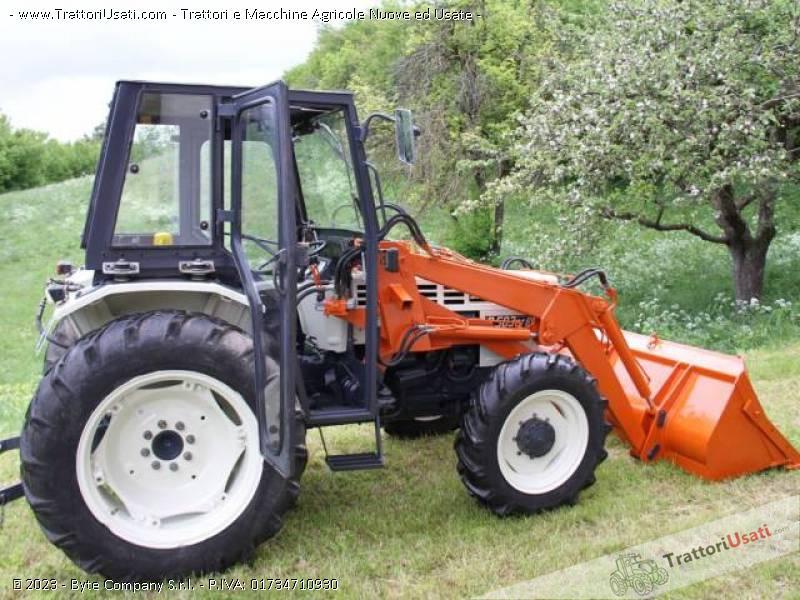 Trattore lamborghini 503 dtb for Cavalli in vendita in trentino